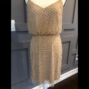 Adrianna Papell NWOT size 10 champagne dress